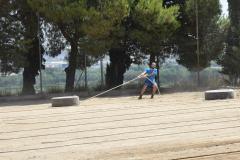 Ruedas (9)